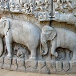 The Symbolism of the Elephant
