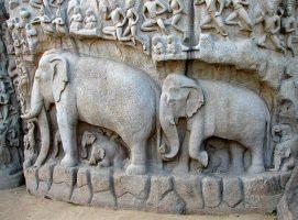 The Symbolism of the Elephant