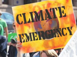 The Anthropocene Age