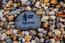 Harmony and the Art of True Friendship