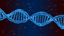 Epigenetics – How to lead our lives